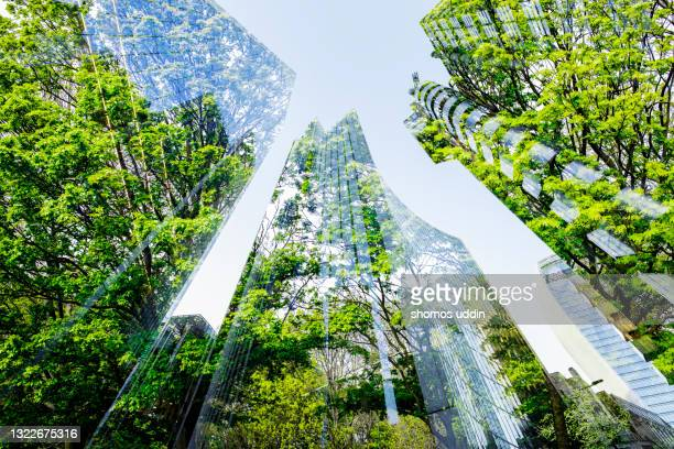 abstract of city skyscrapers and trees - greater london stock pictures, royalty-free photos & images