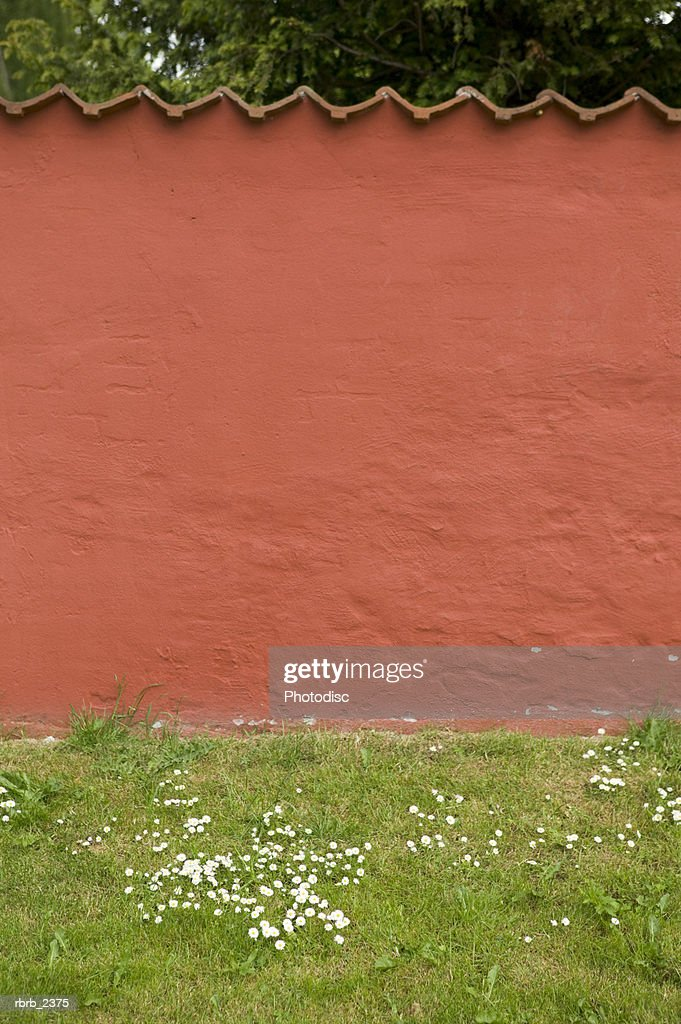 abstract photograph of patterns in a red wall surrounded by green grass : Stockfoto