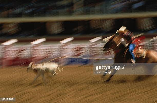 Abstract Rodeo