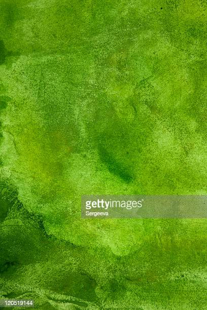 Abstract spring background in green