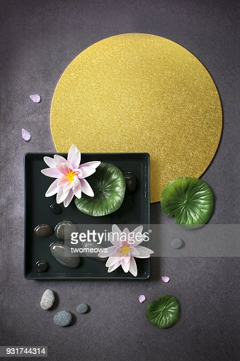Abstract waterlily lotus flowers on geometric background still life.