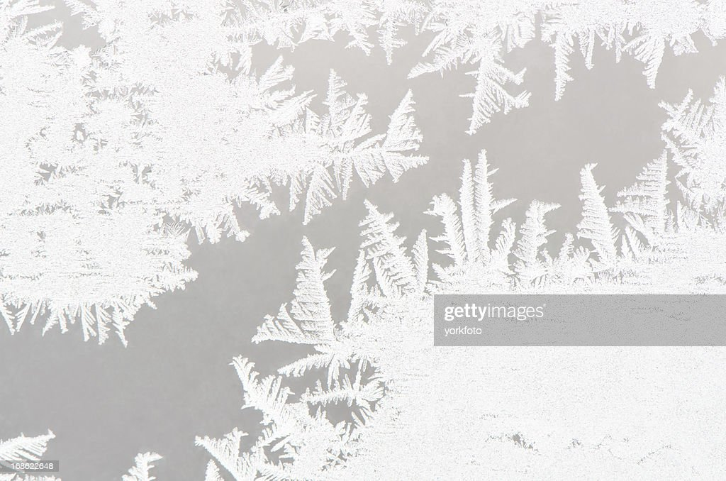 Abstract White Ice Flower Background High Res Stock Photo