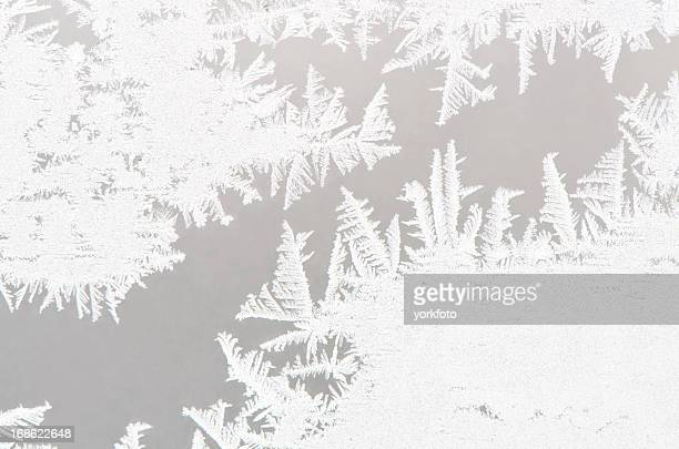 Abstract white ice flower background