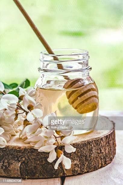 acacia honey - aniko hobel stock pictures, royalty-free photos & images