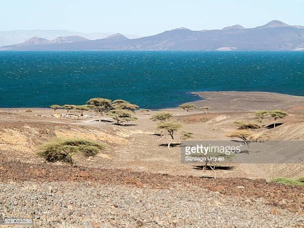 Acacia trees and Turkana village on Lake Turkana