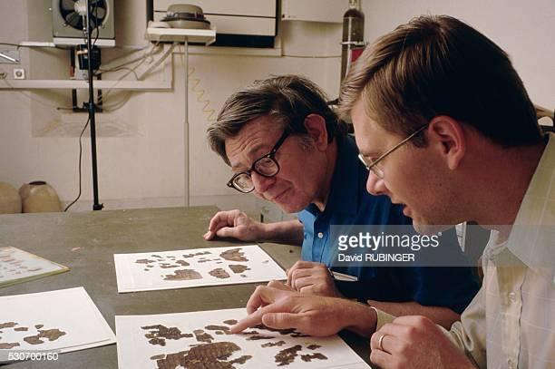 Academics Examine Fragments of Dead Sea Scrolls