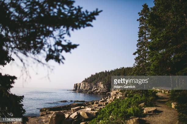 acadia national park iii - bar harbor stock photos and pictures