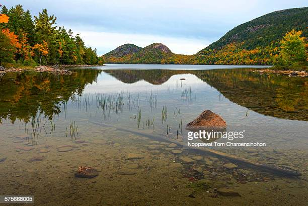 acadia national park - bar harbor stock photos and pictures