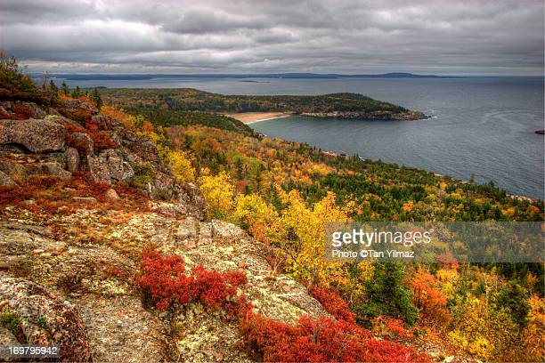 Acadian Autumn