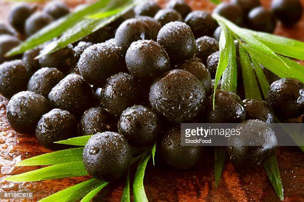 Acai berries with leaves