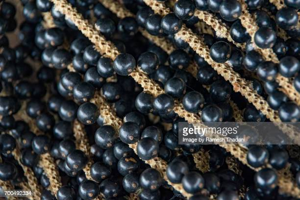 acai fruit (berry) - euterpe oleracea - acai stock pictures, royalty-free photos & images
