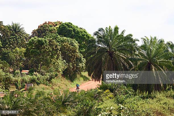 access, jungle road from monrovia to gbarnga - monrovia liberia stock pictures, royalty-free photos & images