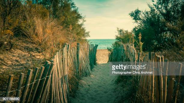 access to the beach - herault stock photos and pictures