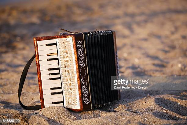Accordion At Beach