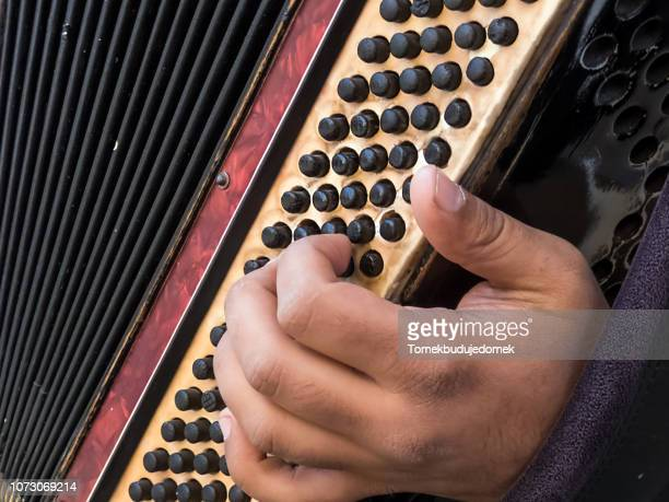 accordion - accordion instrument stock pictures, royalty-free photos & images