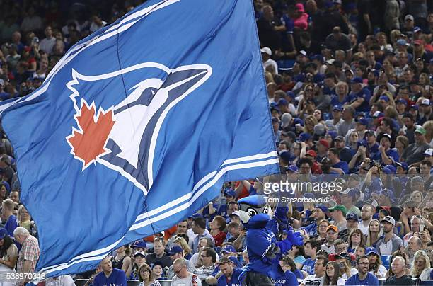 Ace the mascot of the Toronto Blue Jays waves a large Blue Jays flag during MLB game action against the Boston Red Sox on May 27 2016 at Rogers...
