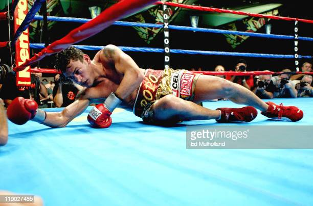 Acelino Freitas struggles to get to his feet after being knocked down by Diego Corrales in the 9th round of their WBO Lightweight Championship bout...
