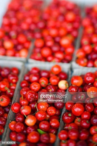 Acerola Fruit in Weekly Market