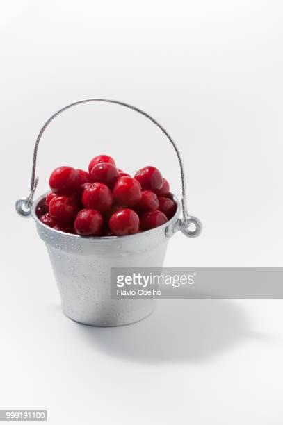 Acerolas in a bucket