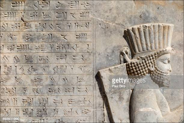 achaemenid bas-relief shows a mede soldier, persepolis, iran - persepolis stock pictures, royalty-free photos & images