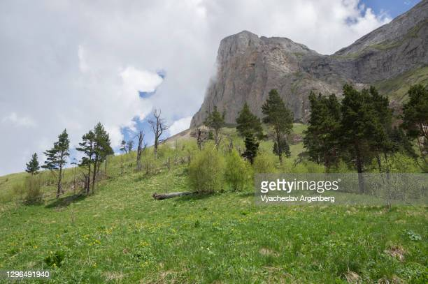 acheshbok rock formation, adygea, caucasus mountains - argenberg stock pictures, royalty-free photos & images