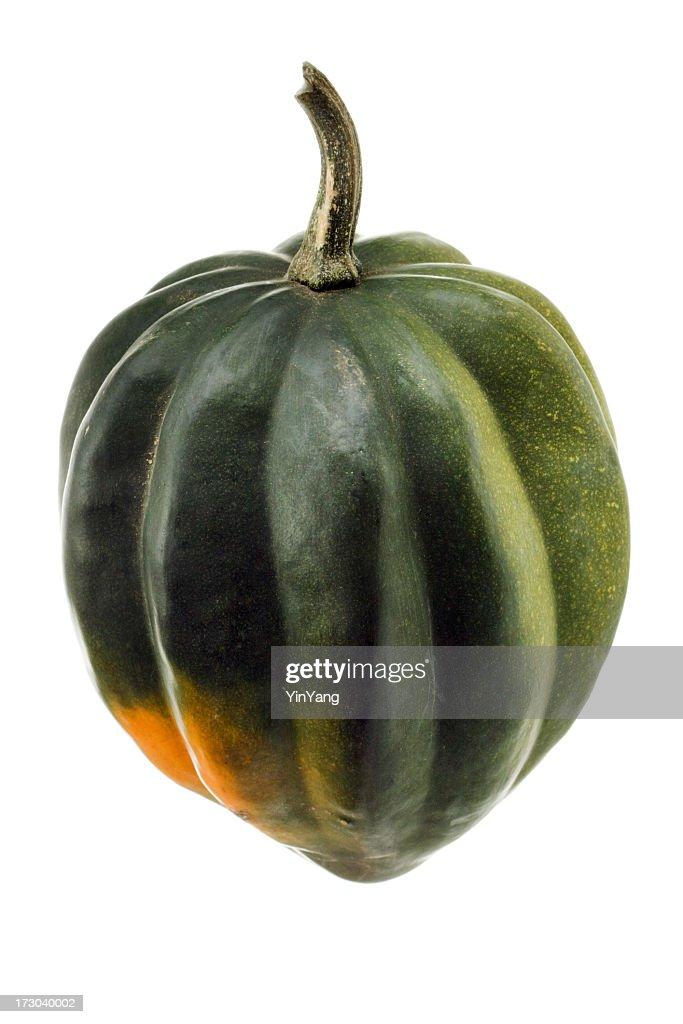 Acorn Squash, a Raw, Fresh, Green Autumn Vegetable, on White : Stock Photo