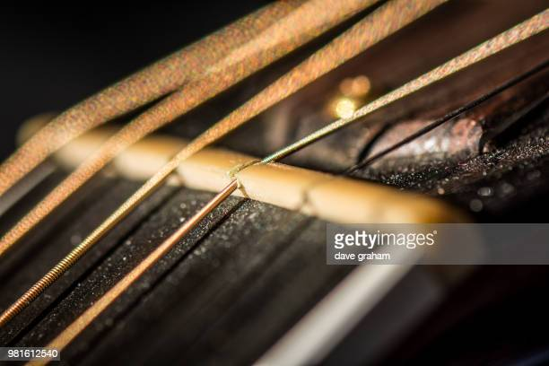 acoustic guitar - neck - bone nut - stringed instrument stock pictures, royalty-free photos & images