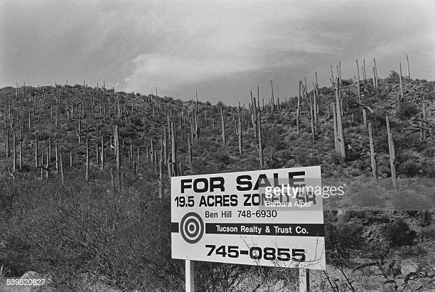 Acres of real estate for sale by the Tucson Realty & Trust Company in Tucson, Arizona, December 1986.