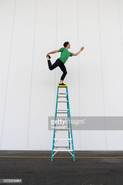acrobat balancing on ladder - vertikal stock-fotos und bilder
