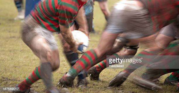 action at the back of a scrum - scrum stock pictures, royalty-free photos & images