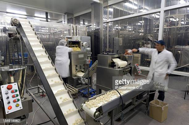 Action photograph of a production line in a food factory