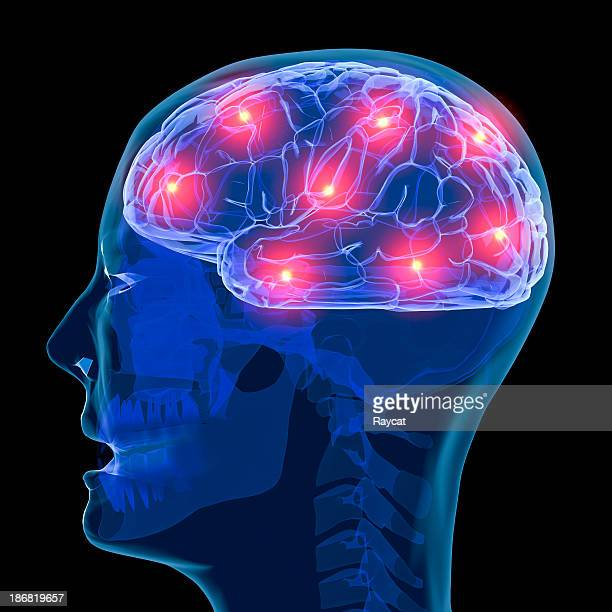 active brain - eeg stock pictures, royalty-free photos & images