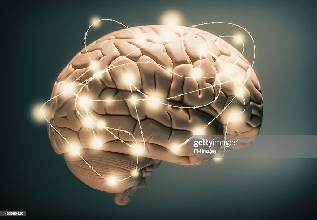 Active human brain : Stock Photo