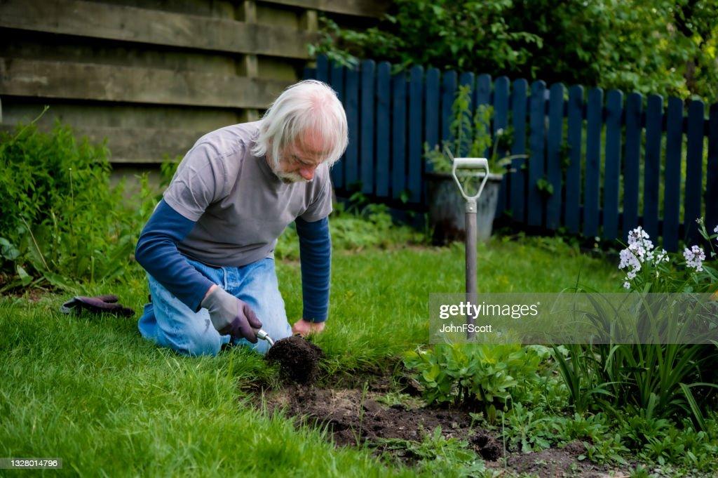 Active retired man digging in his garden : Stock Photo