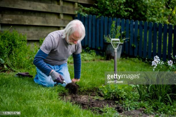 active retired man digging in his garden - johnfscott stock pictures, royalty-free photos & images