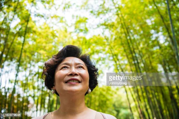 active senior chinese woman walking through bamboo grove - grove_(nature) stock pictures, royalty-free photos & images