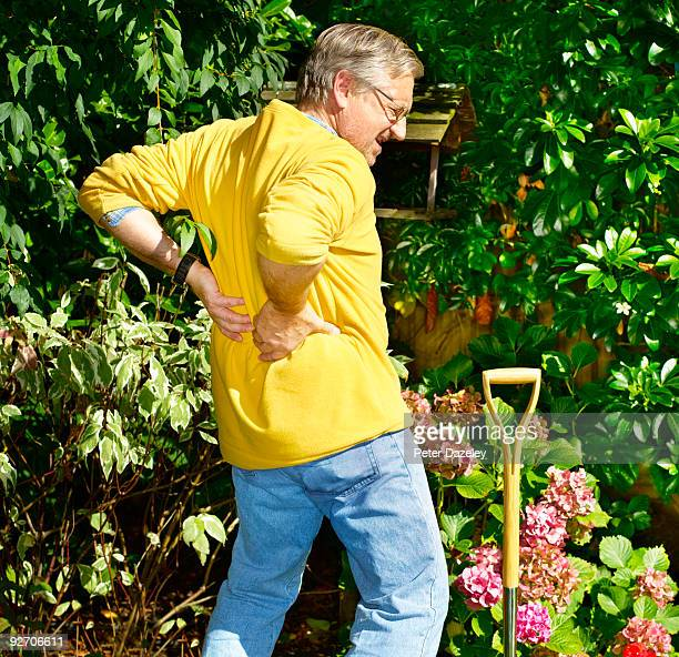 active senior gardener with backache. - herniated disc stock pictures, royalty-free photos & images