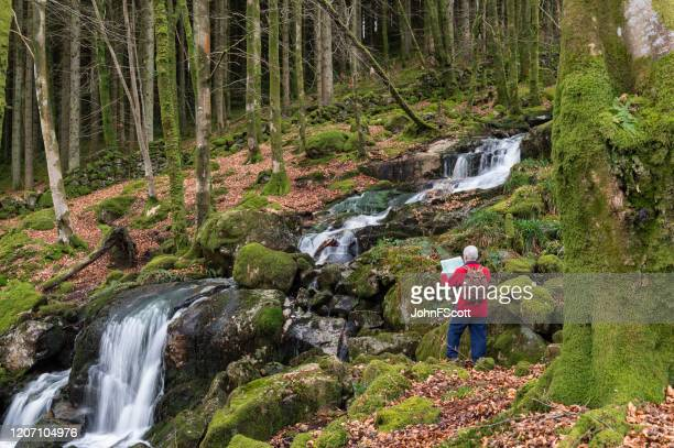 active senior man looking at a map next to a waterfall in deciduous woodland on a winter morning - map stock pictures, royalty-free photos & images
