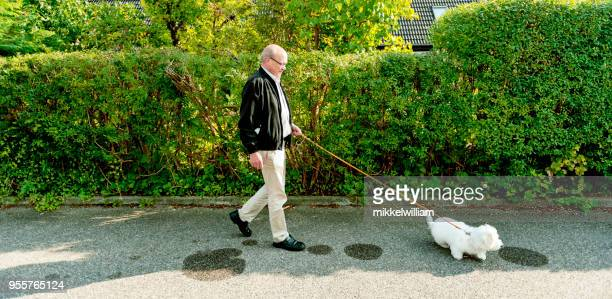 Active senior man takes his dog for a walk and get some exercise
