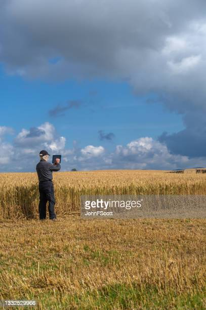 active senior man using a digital tablet in a field - working seniors stock pictures, royalty-free photos & images