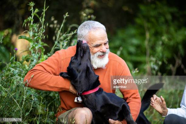 active senior man with his dog - adamkaz stock pictures, royalty-free photos & images