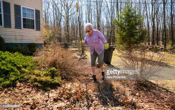 Active senior woman doing spring clean-up at the backyard
