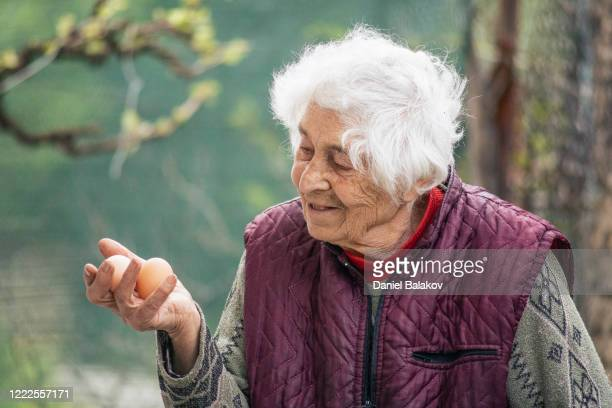 active senior woman picking eggs from her domestic animals in the farm. proud with her production. fresh chicken eggs from domestic hens. fresh and healthy organic food. - animal related occupation stock pictures, royalty-free photos & images