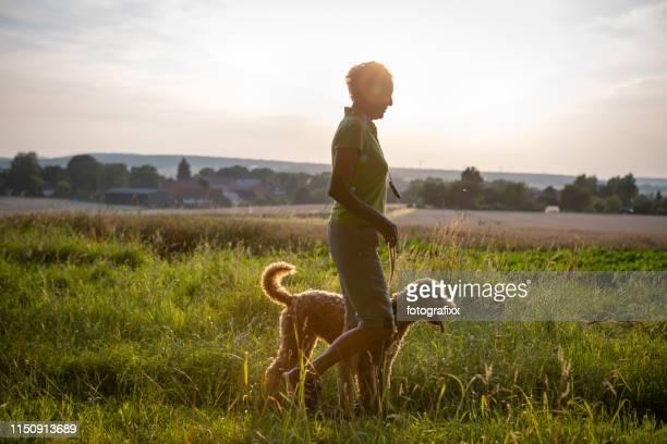 aktive seniorin zu fuß mit ihrem hund in ländlicher szene - fotostock stock-fotos und bilder