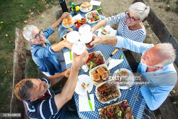 Active seniors raising their glasses together during a picnic lunch in nature