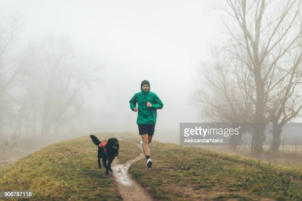 active young man jogging with his dog - male animal stock pictures, royalty-free photos & images