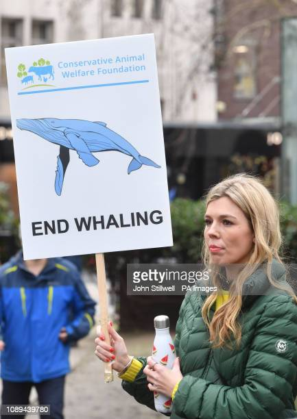 Activist Carrie Symonds takes part in an antiwhaling protest outside the Japanese Embassy in central London