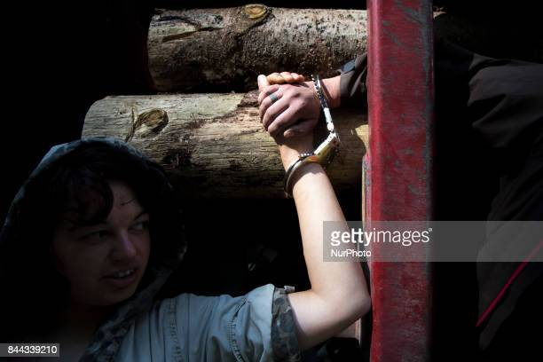 Activist quot Camp for a forest quot organization blocks transport of illegal logged wood in Bialowieza primeval forest on August 16 2017