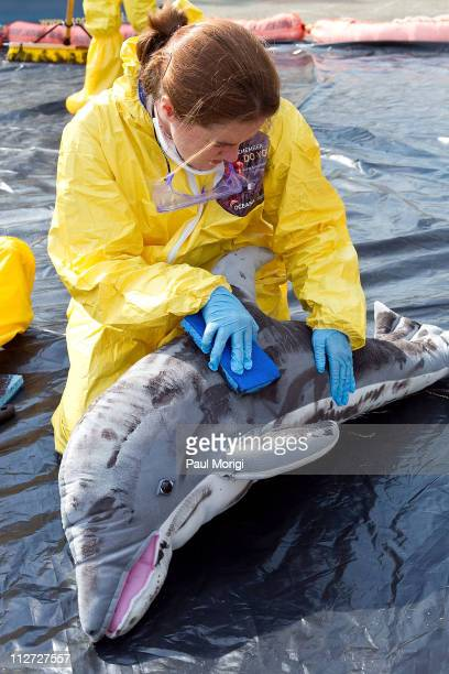 Activists demonstate the effects of an oil spill on wildlife and the cleanup involved at a news conference to mark the first anniversary of the BP...