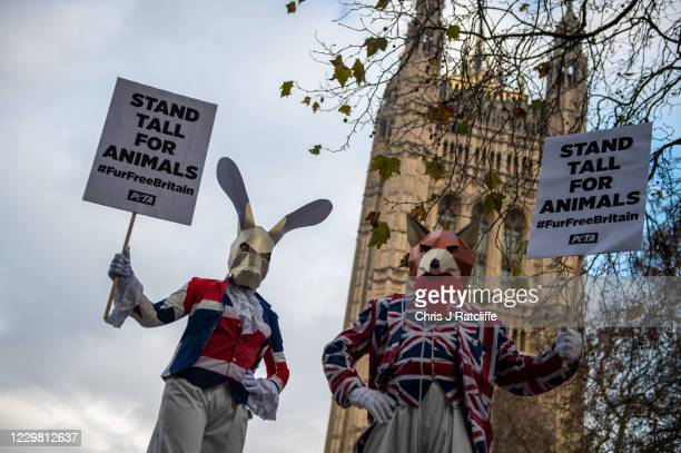 Activists from animal rights group PETA, People for the Ethical Treatment of Animals, demonstrate on Fur Free Friday outside the Houses of Parliament...